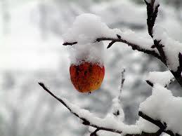 χειμώνας3